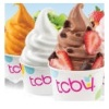TCBY : Frozen Treat for FREE Deals
