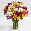 temporary deals on 100 Blooms of Poms for Mom w/Ginger Vase