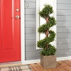 Romano 4-foot Indoor/ Outdoor Boxwood Spiral Tree Deals